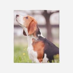 3D Pătură - Beagle in the Wood