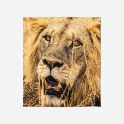 3D Pătură - Lion