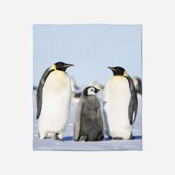 3D Pătură - Pinguins