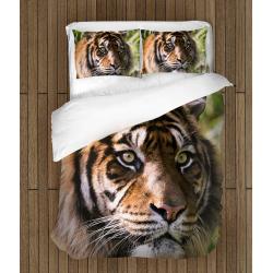 Lenjerie de pat Tigru - Tiger