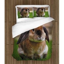 Set lenjerie de pat Iepuraș- Rabbit